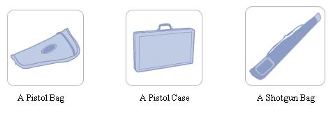 A pistol bag, a pistol case or a shotgun bag